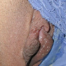 wet and creamy panties a 233x233
